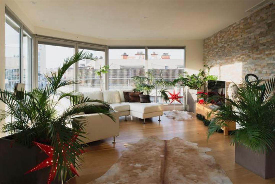 Moderne penthouse met groot terras